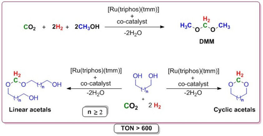 Pathway for the utilization of CO2/H2 to DMM