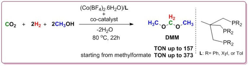 Cobalt Triphos catalyzed CO2 hydrogenation to DMM